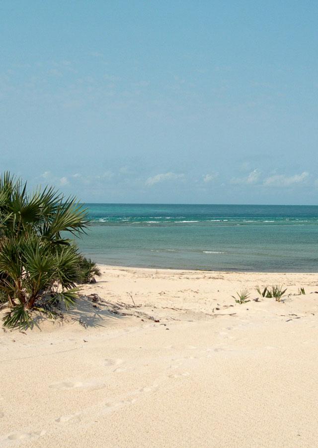 plage îles eparses océan indien